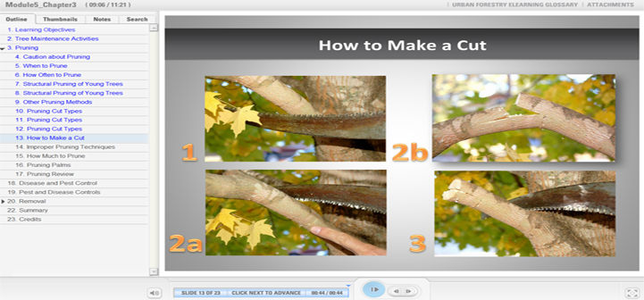 eLearning screenshot-urban forestry